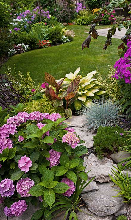 Gazal Landscaping Services, Inc. Landscaping