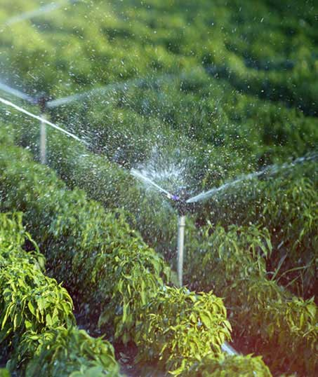 Gazal Landscaping Services, Inc. Irrigation System Repair
