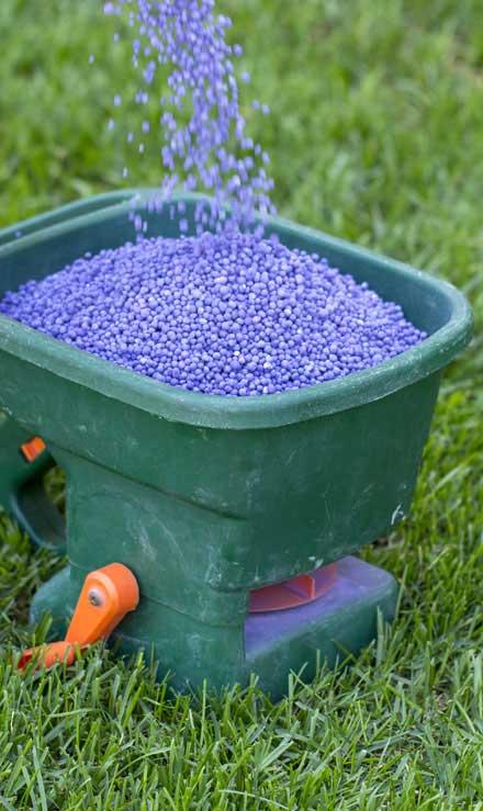 Gazal Landscaping Services, Inc.  Lawn Fertilization