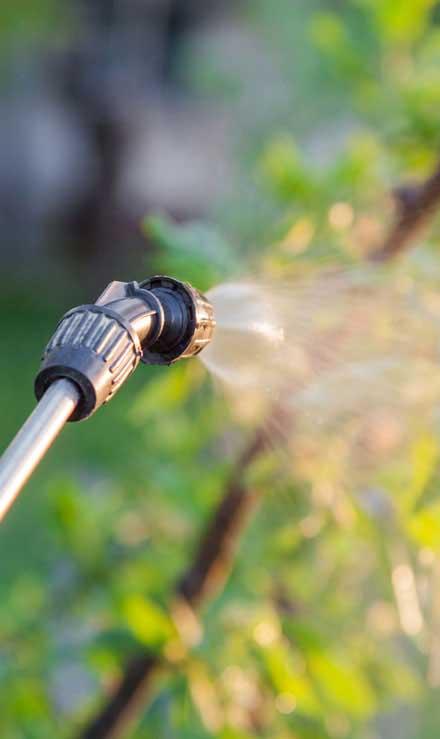 Gazal Landscaping Services, Inc. Lawn Pest Control
