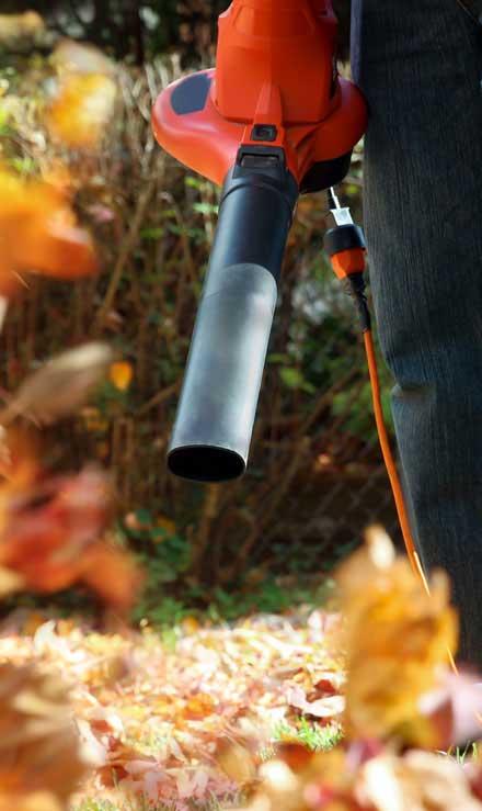 Gazal Landscaping Services, Inc. Leaf Removal