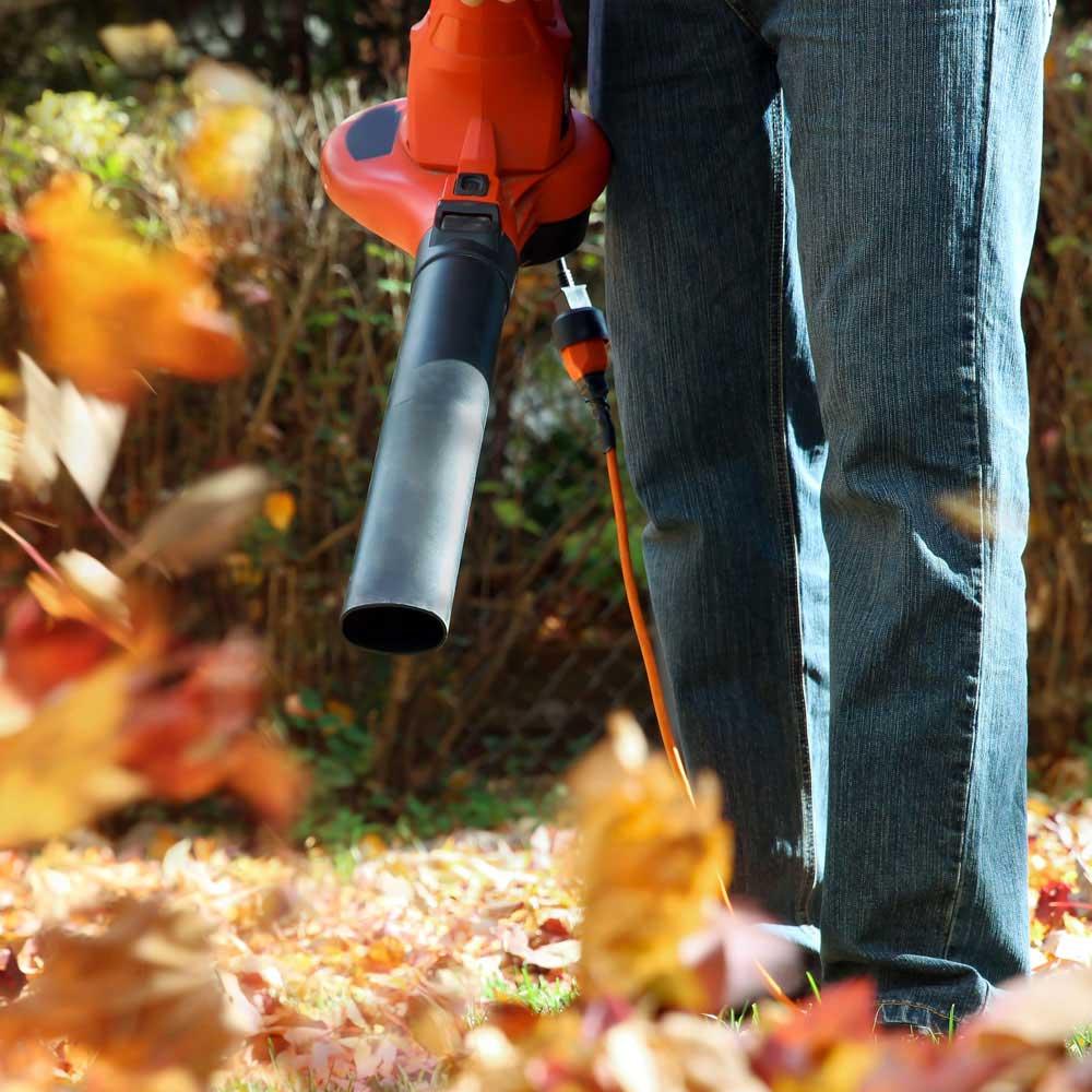 Leaf Removal Service